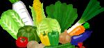 野菜1日350gってどれくらい?